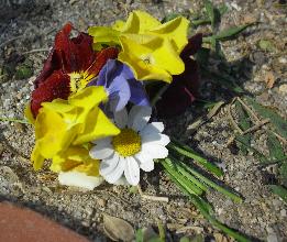 kawara-L花束