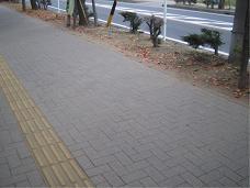 2_20101117202001.jpg