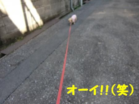 CIMG0117_convert_20120221083918_20120221131650.jpg