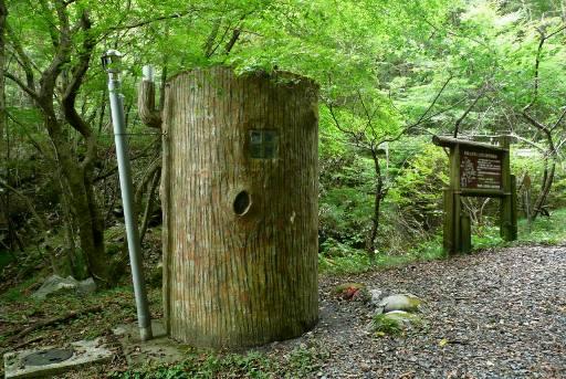 大木を模したトイレ