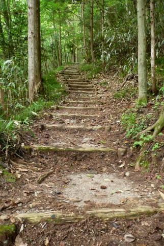 七つ滝への山道