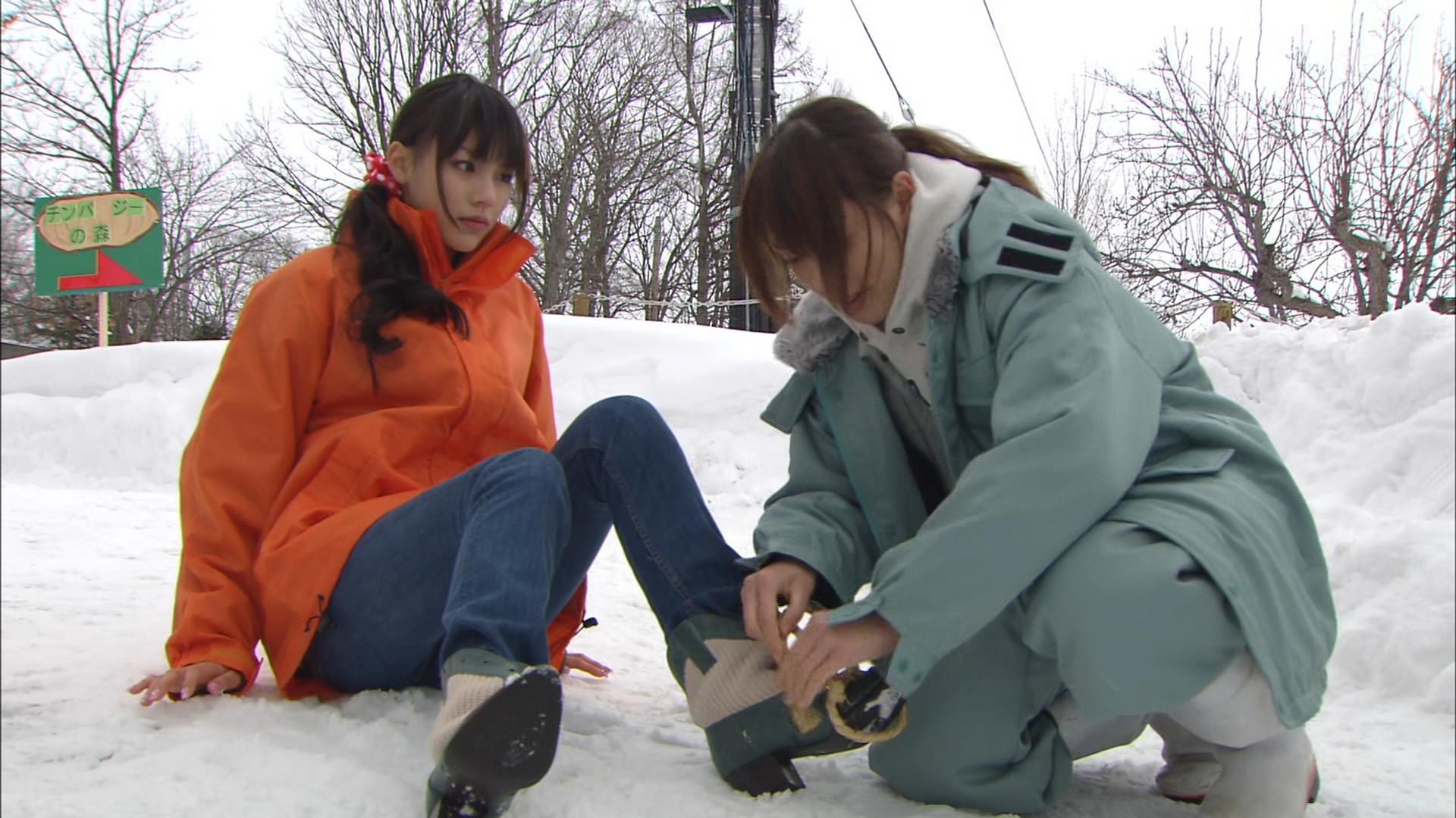玩具箱 「奇跡の動物園2010 旭山...