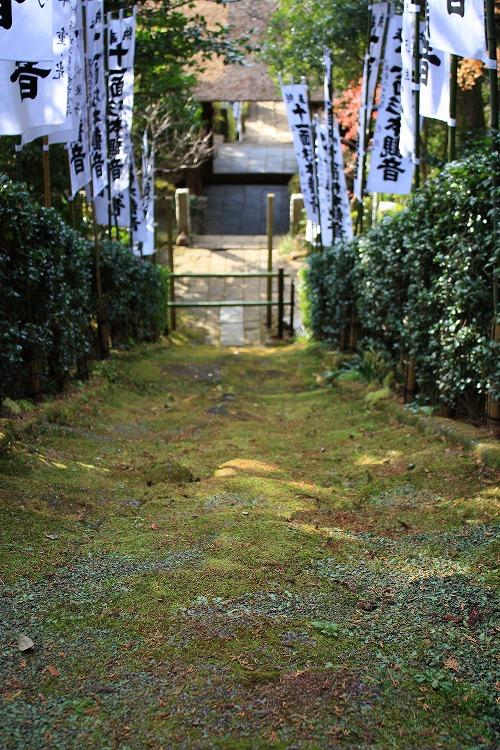 091229_1031杉本寺