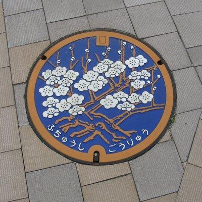 fuchucity_manhole1.jpg