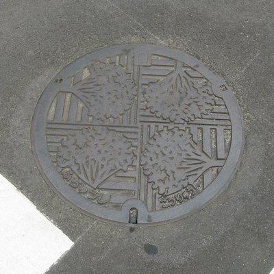 fuchucity_manhole2.jpg