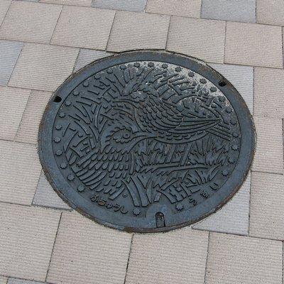 fuchucity_manhole3.jpg