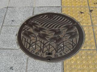最近流行の絵柄のマンホール。描かれているのは姫路市の鳥「シラサギ(白鷺)」。
