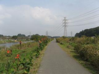 玄鼻橋付近のサイクリングロード。