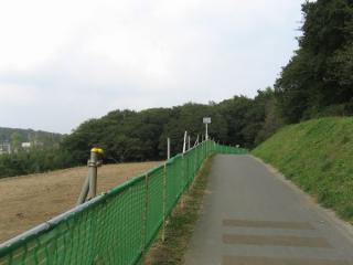 柏井橋の手前から渓谷の雰囲気が強まる