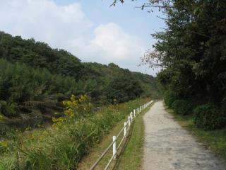 完全な渓谷の中を進む花見川区横戸町付近