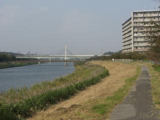 大和田排水機場を過ぎると新川サイクリングロードとなる。花見川とほぼ同じ趣き。