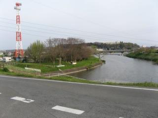 利根川堤防上から見た長門川。ここからは見えないが左にも分岐している。