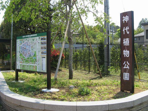 神代植物公園前バス停付近