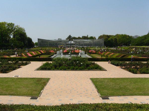 園内の中央にあるバラ園(花はまだ咲いていなかった)と噴水。奥の建物は大温室。