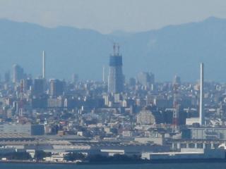タワーが遠方からでも確認できるようになった頃。