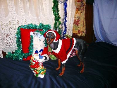 211224クリスマス