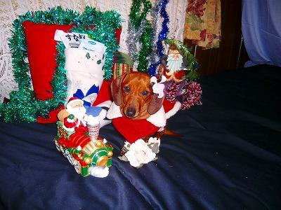 211224クリスマス (2)