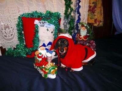 211224クリスマス (3)