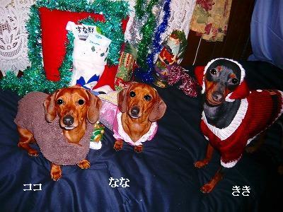 211224クリスマス (11)