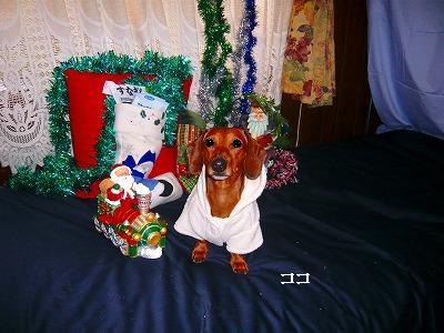 211224クリスマス (12)