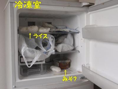 P3210078.jpg