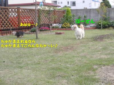 P5130429.jpg