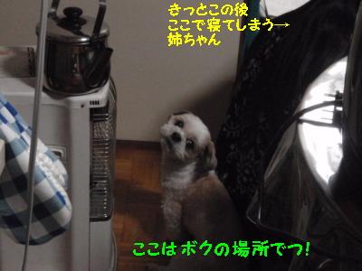 PC270214.jpg