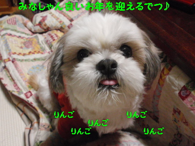 PC301758.jpg
