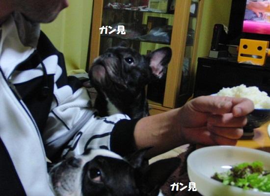 ○ダブルガン見
