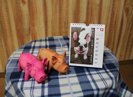 2011犬川柳