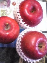 (12)apple.jpg