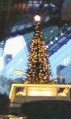京都駅 ツリー