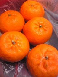 orange☆110219