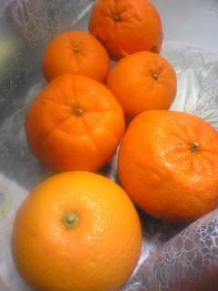 orange110216.jpg