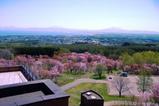 天都山展望台から