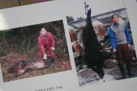 2010  1 29  イノシカチョウ再来_R