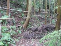 2011 7月26日 コヅカアートフェスティバル 森の整備 008_R