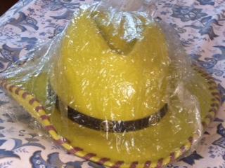 ブログ用・帽子2