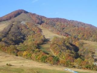 斑尾山の紅葉