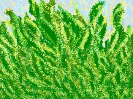 *五月の緑