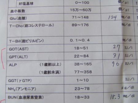 DSCF2411_20110807105828.jpg