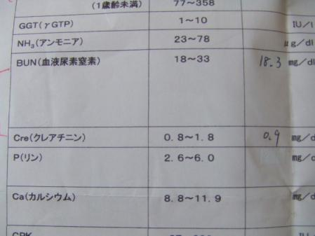 DSCF2412.jpg