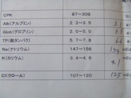 DSCF2413_20110807105827.jpg