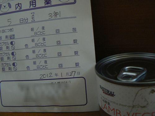 7_20120201194340.jpg