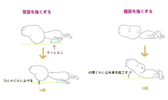 腰痛運動2-1