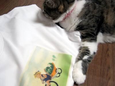 すいかネコTシャツ-4
