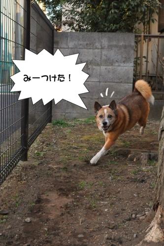 003_20100131005610.jpg