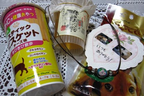 100_20100906231245.jpg