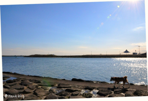 葛西臨海公園 188