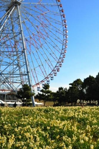 葛西臨海公園 101